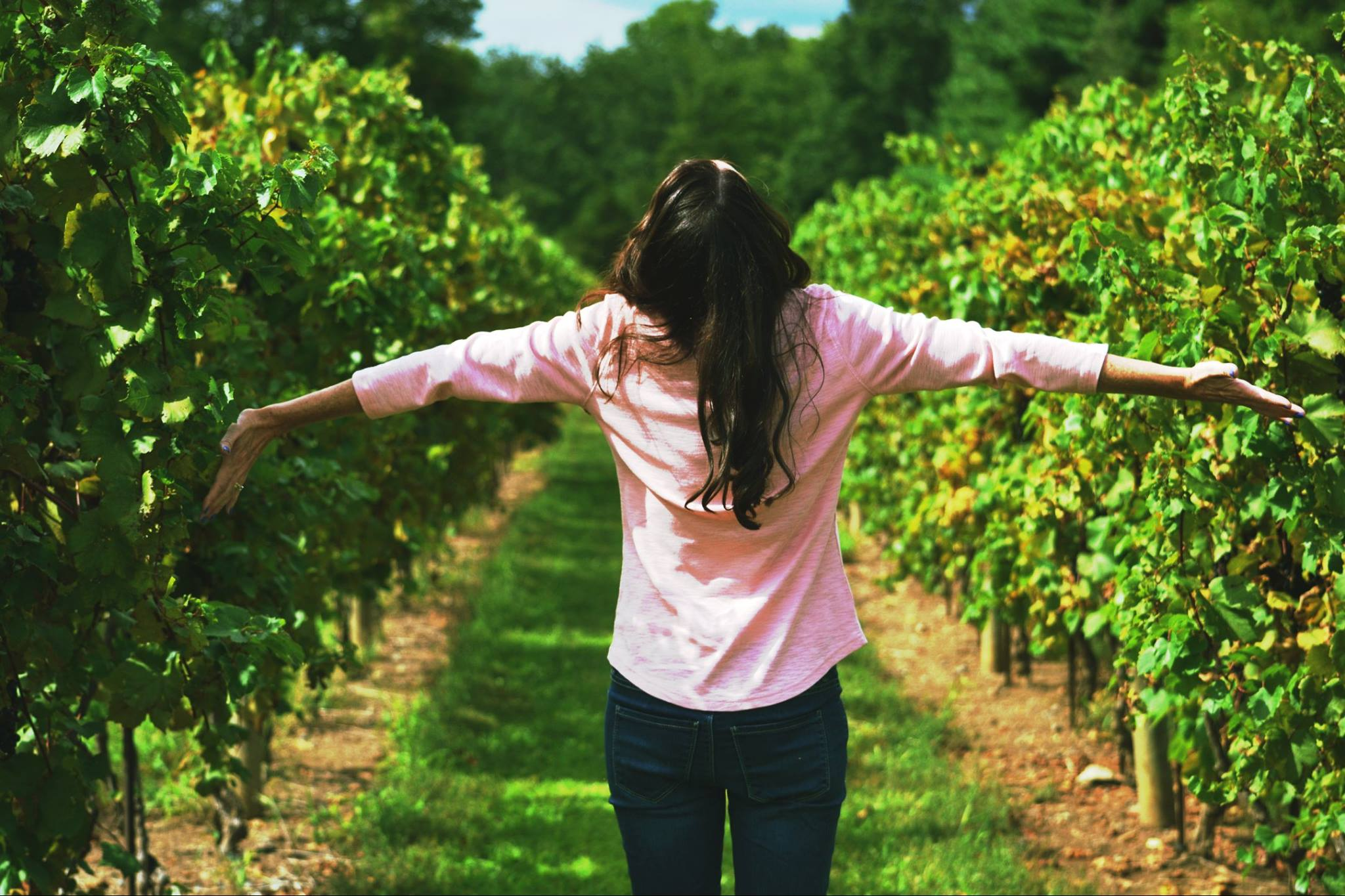 "Ten Reasons to Plan a ""Girls' Day Out"" at a Vineyard"