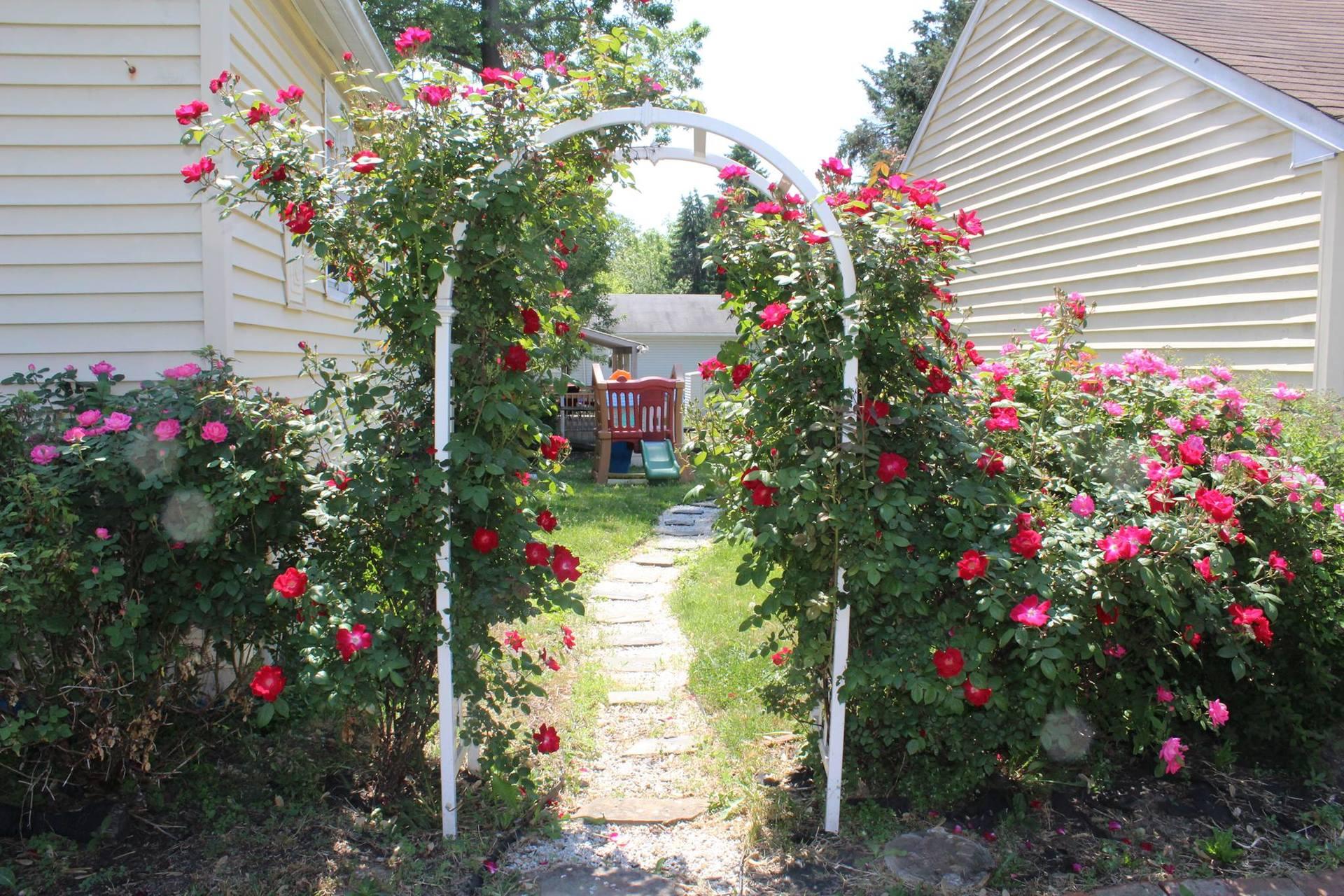 rosegardenblogpost.jpg