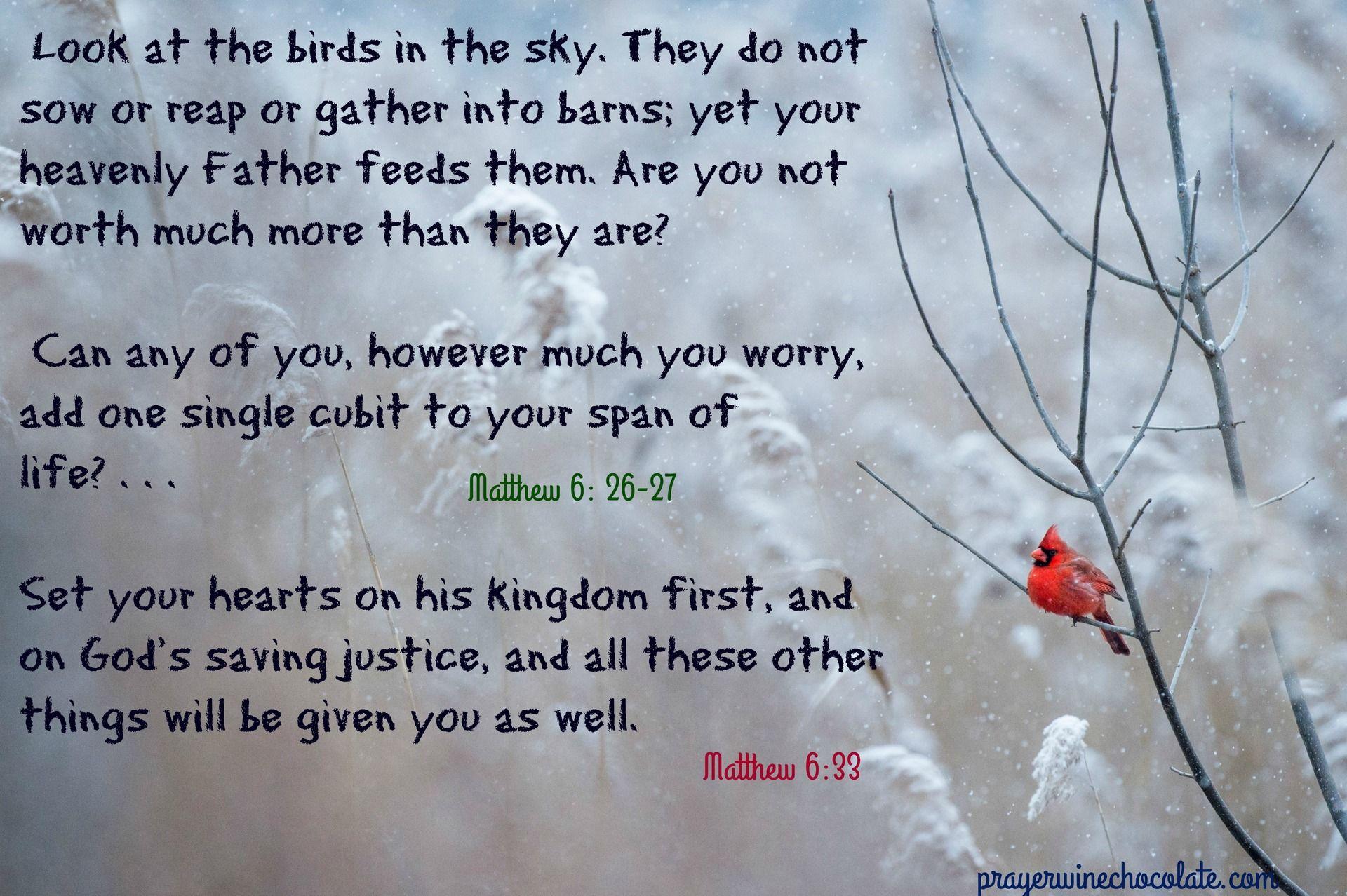 birdwintercardinalGodprovides.jpg
